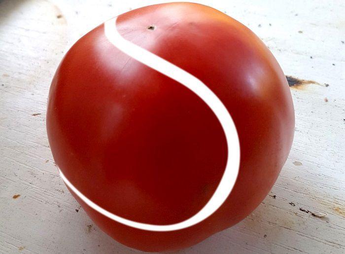 rosie minge de tenis